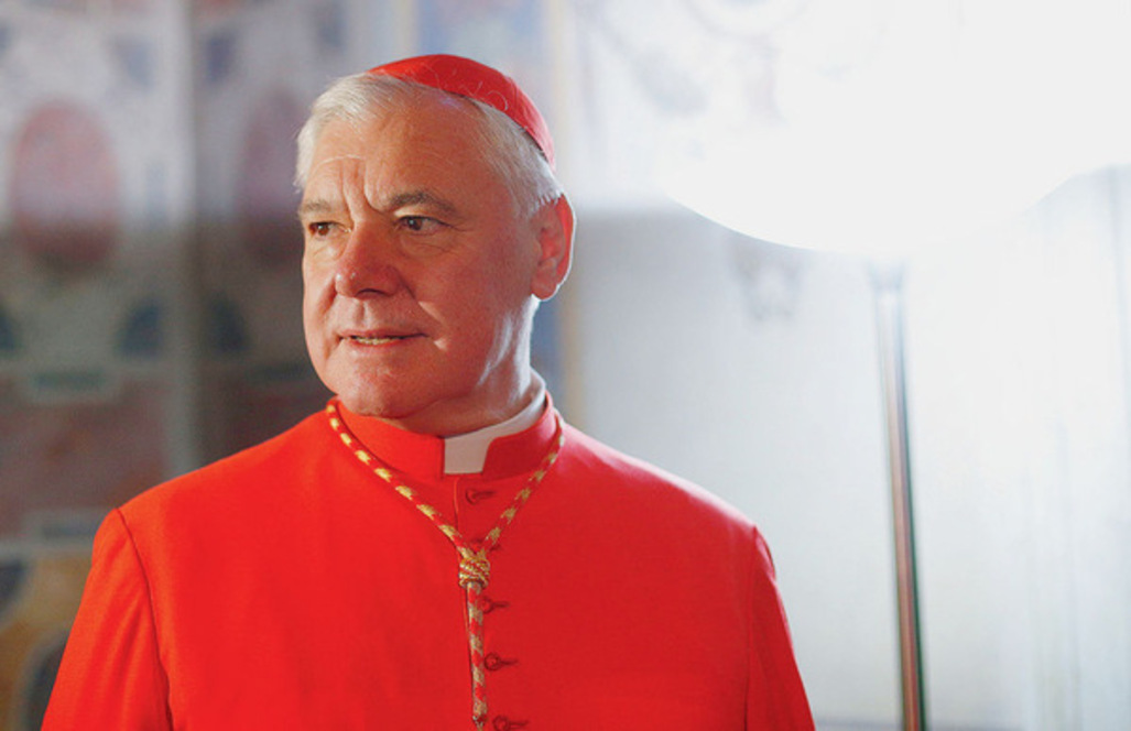 Image result for cardinal muller